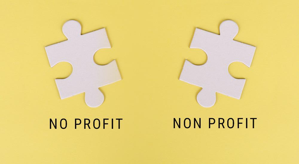 No Profit o Non Profit?