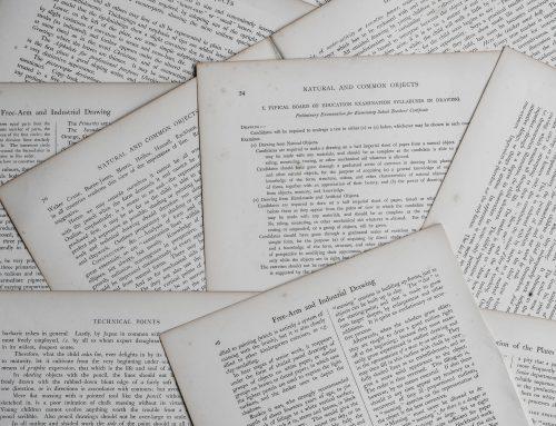 Articolo 17 – Volontario e attività di volontariato (codice del terzo settore)